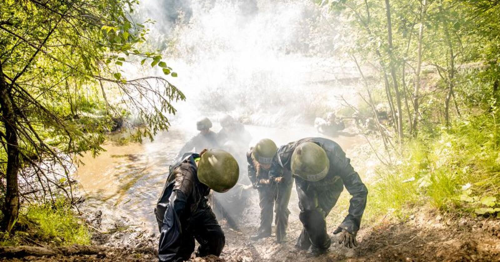 Rema, Norgesgruppen og Coop er blant dem som skal sørge for mat i kroppen hvis det skulle bli krig her i landet. Illustrasjonsfoto: Stian Lysberg Solum / NTB scanpix