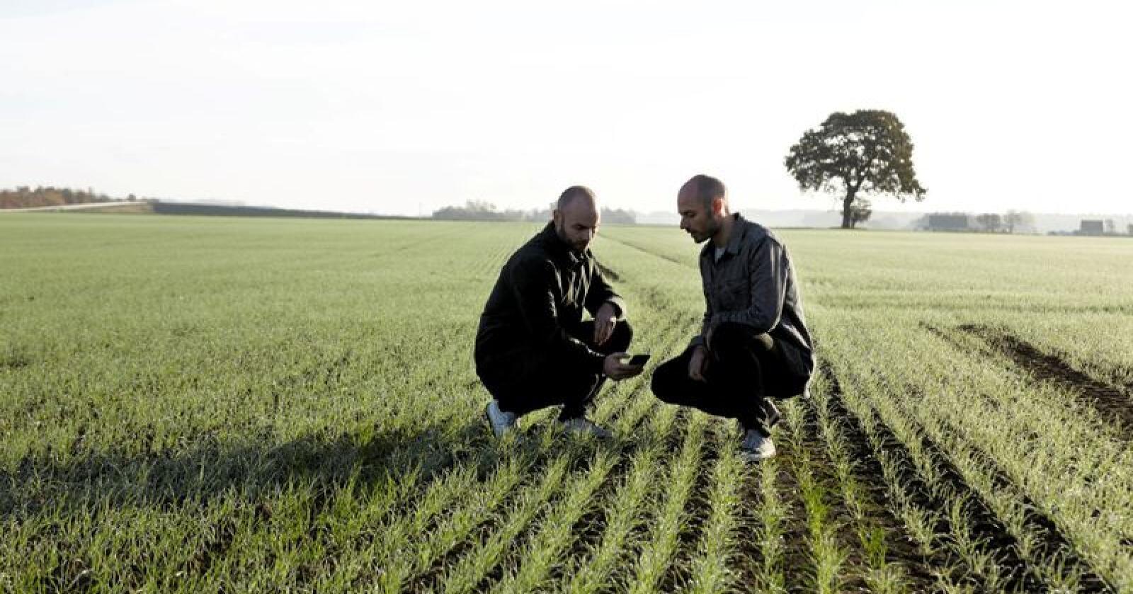 Søren Iver Knudsen (tv.) og Anders Knudsen er grunnleggerne av FarmBackup Task. Foto: Peter Prik Larsen
