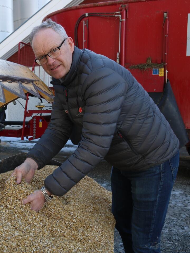 TEST: Erlend Røhnebæk på Gjølstad gård har testet alkalisert havre på melkekyr, i samarbeid med Tine Rådgiving.