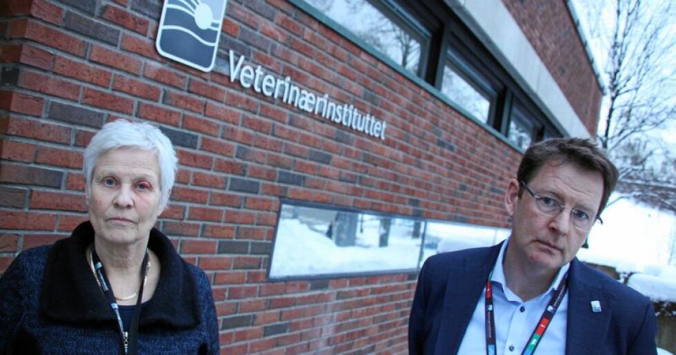 Beredskaps- og sikkerhetsdirektør Jorun Jarp og administrerende direktør Gaute Lenvik ved Veterinærinstituttet sier de må kutte i stillinger og fasiliteter. Foto: Lars Bilit Hagen