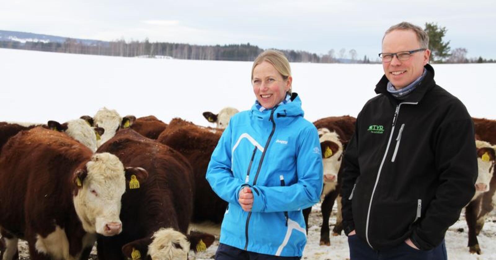 Anne og Johannes Ingvoldstad har om lag 150 dyr på gården på Vang utenfor Hamar. Foto: Lars Bilit Hagen