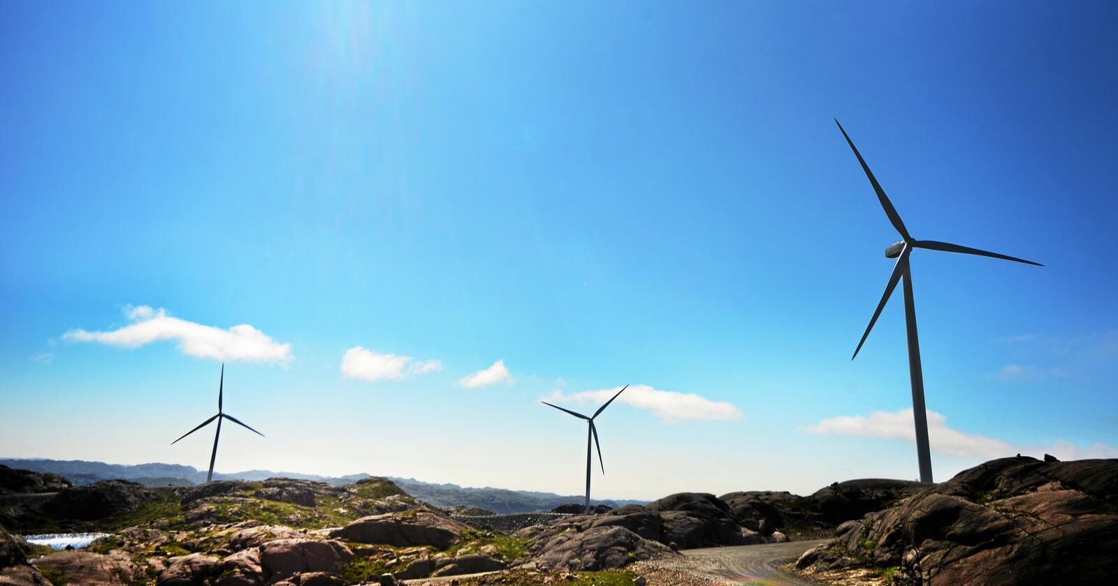 Vindkraftdebatten er hard flere steder i landet,. Professor mener mangel på planlegging har forsterket konfliktene. Foto: Siri Juell Rasmussen