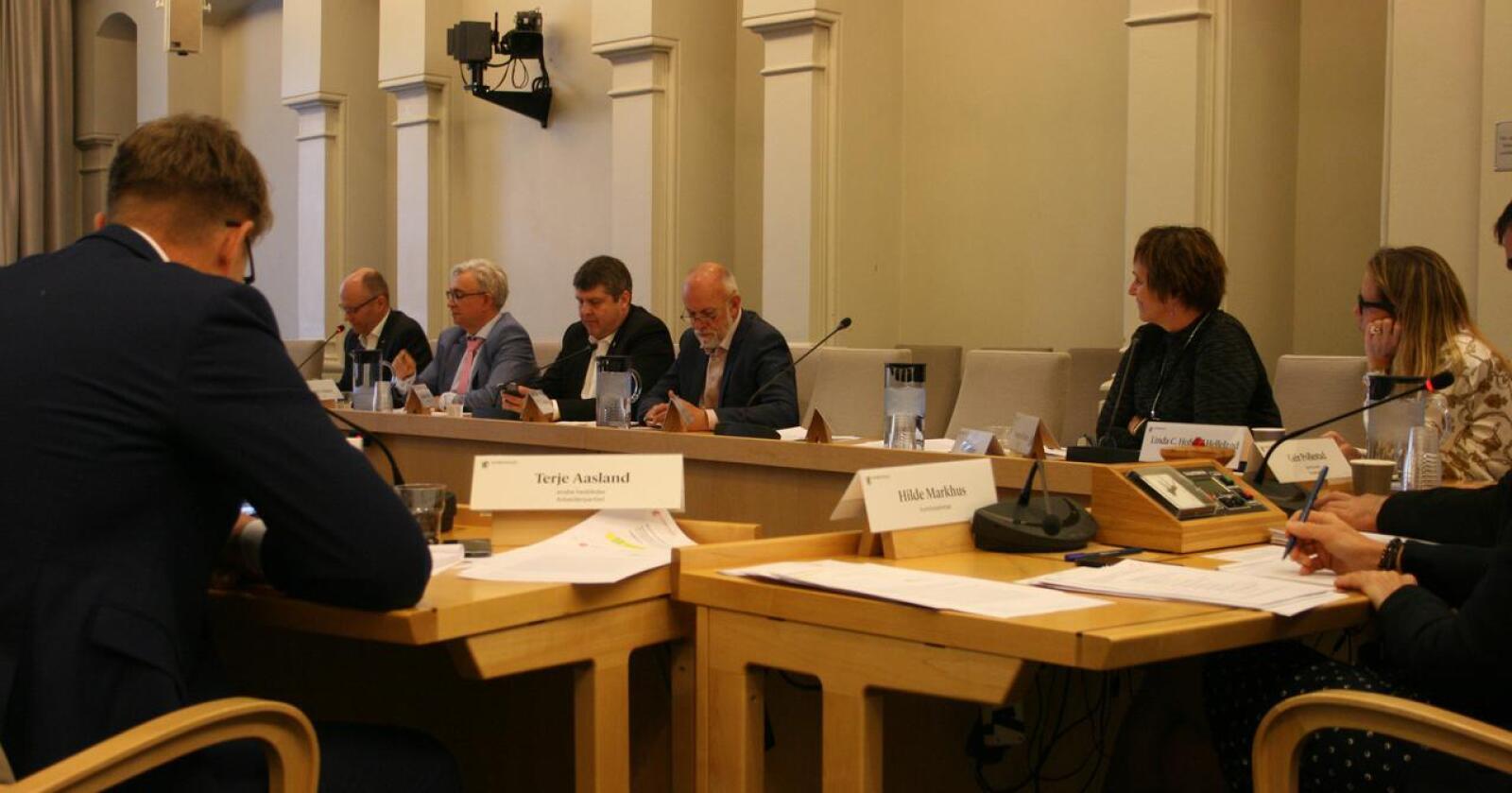 Høring: Som en «oppladning» til innstillingen, inviterte næringskomiteen flere næringsorganisasjoner til åpen videkonferansehøring. (Foto: Bjarne Bekkeheien Aase, Nationen)