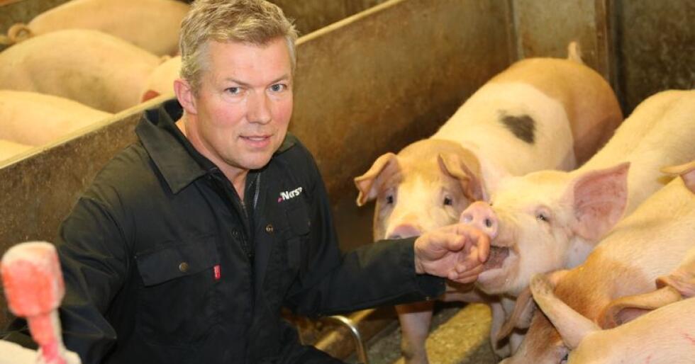 Lars Hulleberg bruker mye tid på å bygge opp tillitt hos dyra. Han mener røkteren er avgjørende for resultatet. (Foto: Lars Olav Haug)