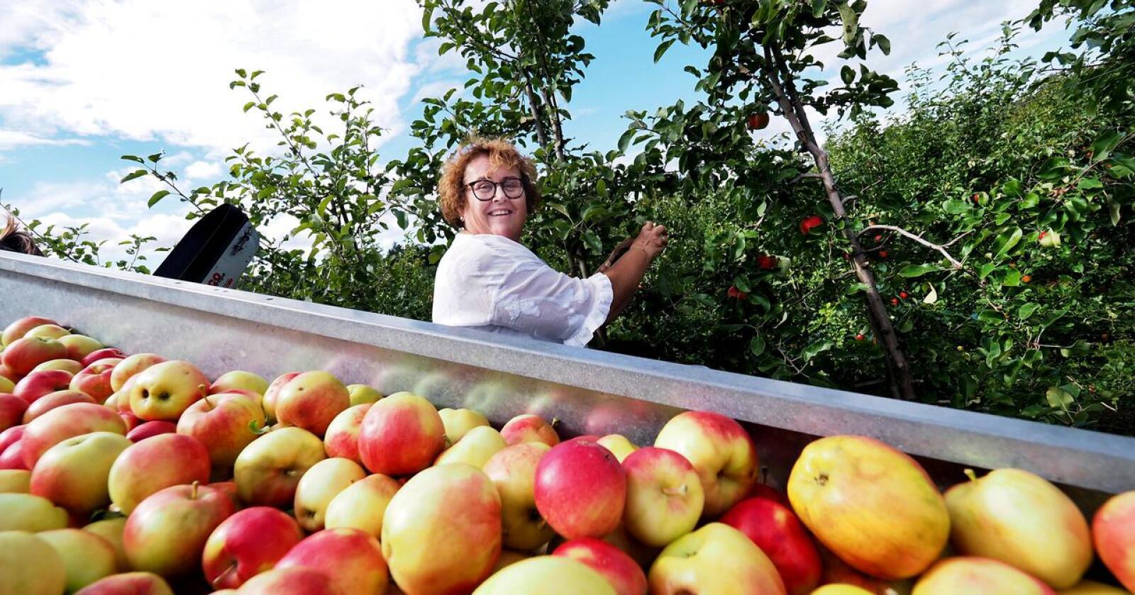 Landbruks- og matminister Olaug Bollestad (KrF) har trolig nok å henge fingrene i under sluttspurten av forhandlingene om en ny frihandelsavtale med Storbritannia denne uken. Foto: Siri Juell Rasmussen