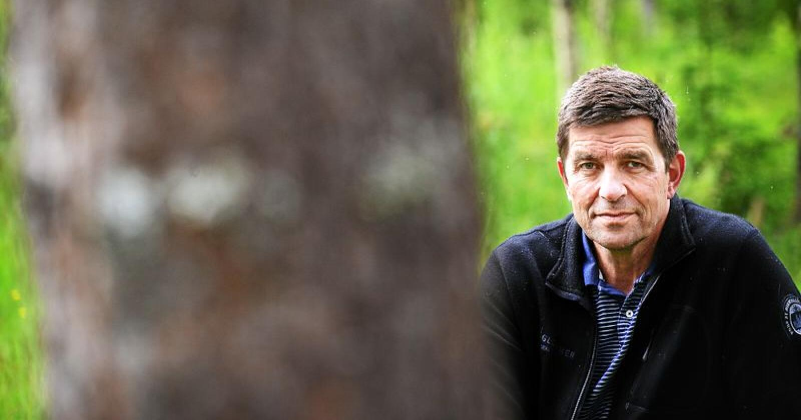 Klimatiltak: Skogen er det billigste klimatiltaket Norge har, skriver Gunnar A. Gundersen. Foto: Siri Juell Rasmussen