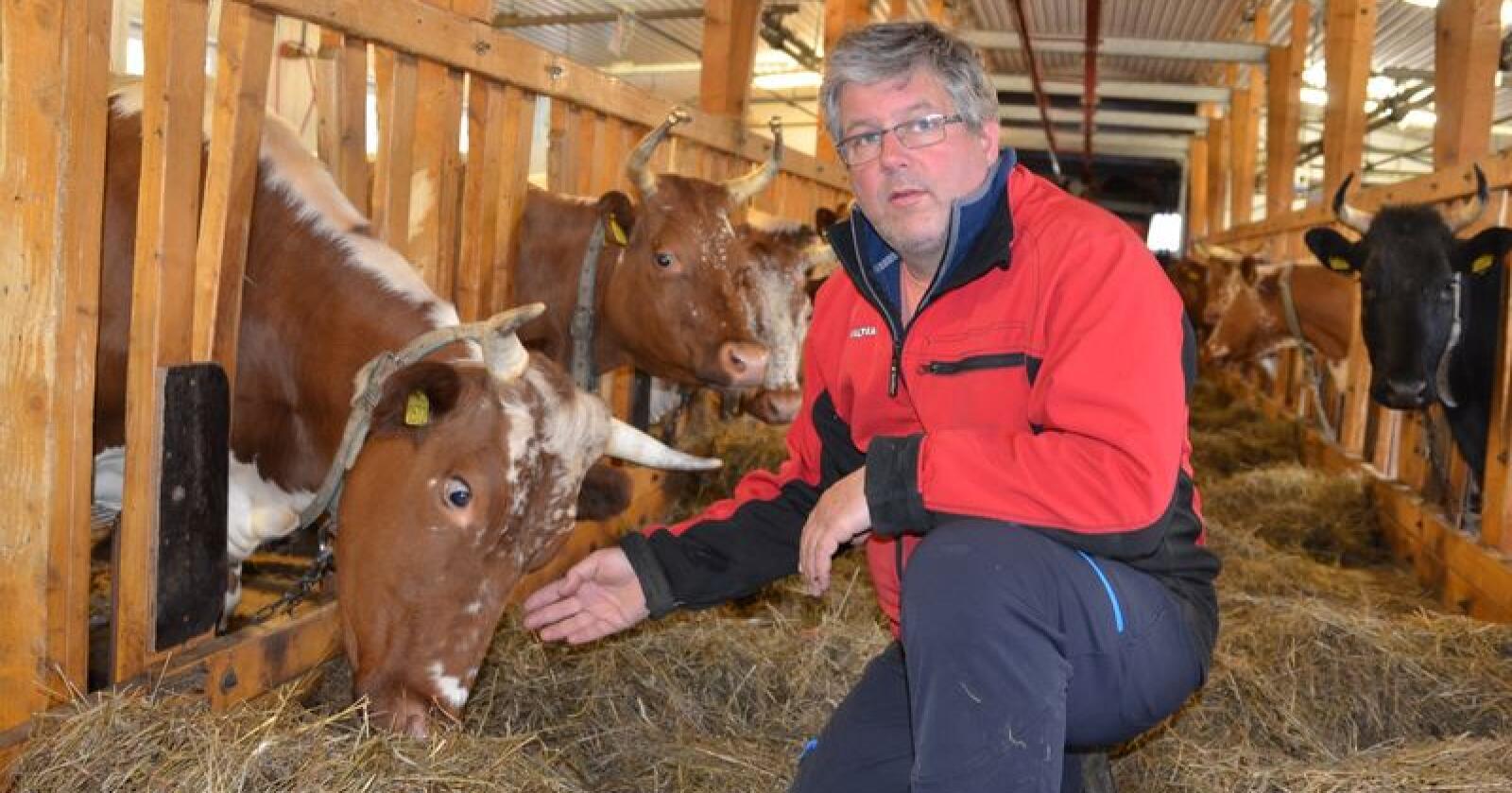 Aslak Snarteland er leder i Telemark Bondelag. (Foto: Arkiv)