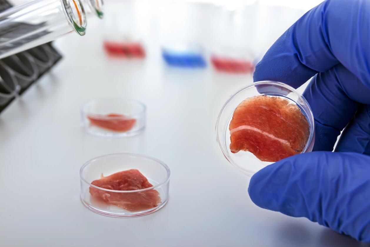 Kunstig: Kjøtt framstilt i laboratorier vil bli langt billigere i framtida, mener nederlandske Peter Verstrate i seskapet Mosameat. Foto: Colourbox