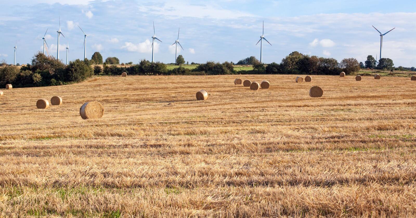 Klimakutt: EU-bøndene og -samvirka i samanslutninga Copa-Cogeca ynskjer karbontollen velkomen, men er skuffa over at jordbruksprodukt ikkje er inkludert, og at gjødsel er inne, skriv Hildegunn Gjengedal. Foto: Mostphotos