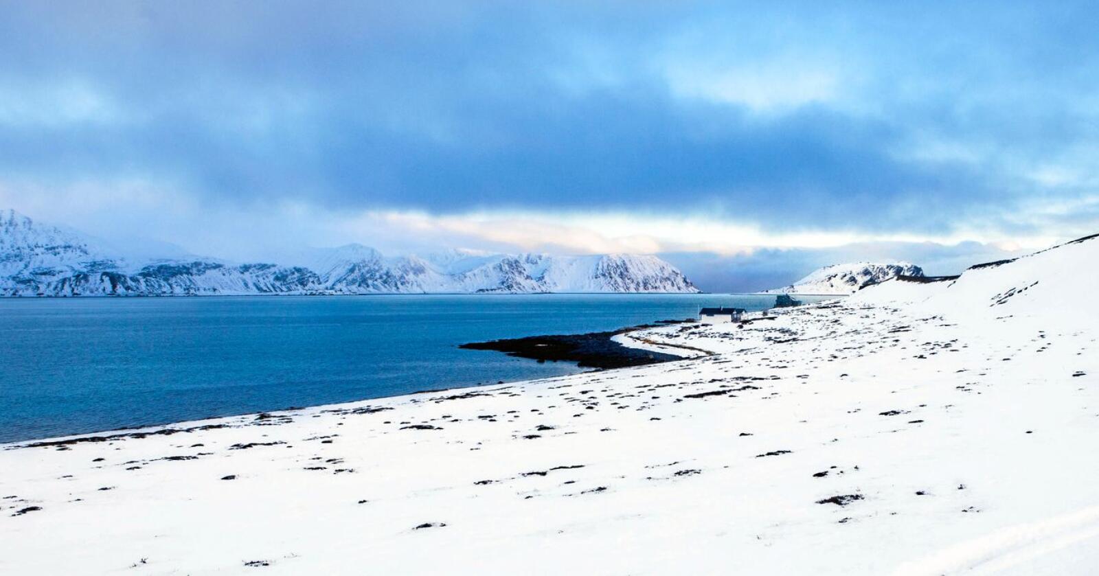 Veidnes. Foto: Jan-Morten Bjørnbakk / NTB