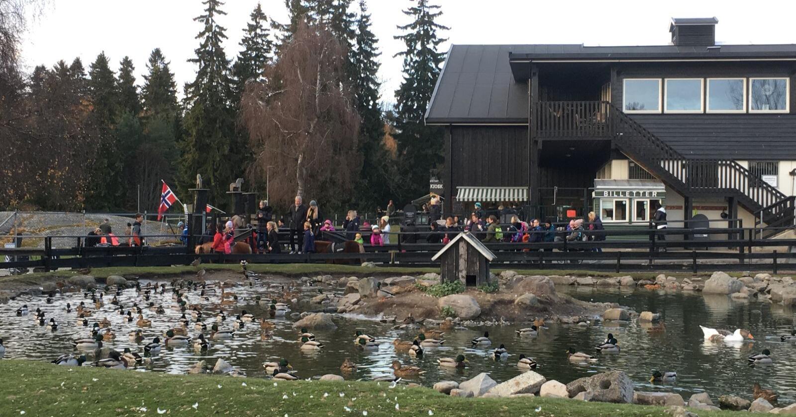 Konkursfare: EKT Rideskole og Husdyrpark står i akutt fare for å gå konkurs på grunn av korona. Foto: Linda Sunde