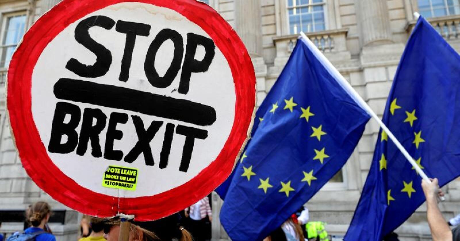Tirsdag er det duket for første runde i den antatt siste kampen om brexit. Snaut to måneder før britene forlater EU, har politikerne i praksis bare noen få dager på å bestemme hvordan det skal skje. Disse demonstrantene viser tydelig hvilket utfall de ønsker seg. Illustrasjonsfoto: Kirsty Wigglesworth / AP / NTB scanpix