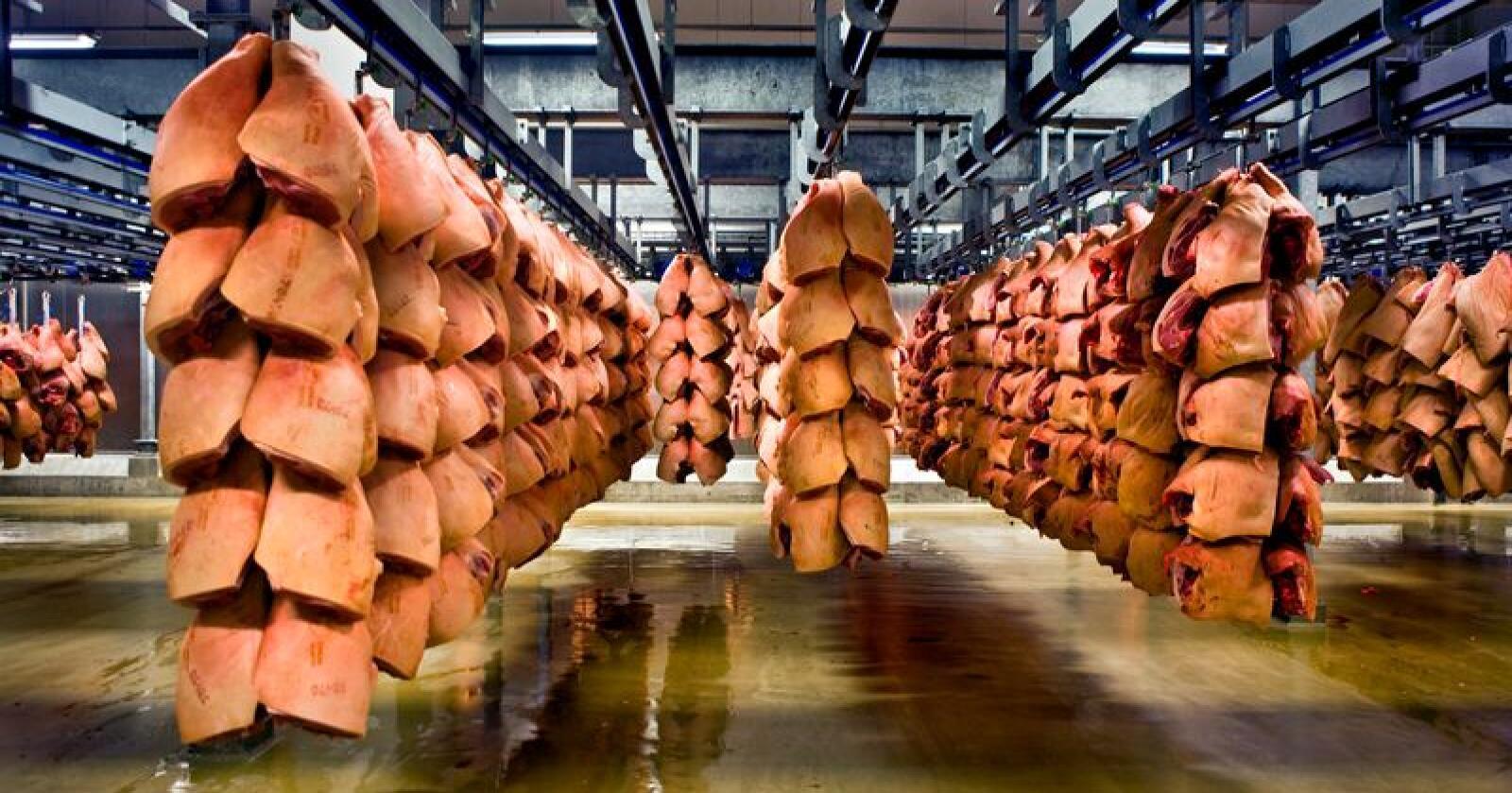 Også handelen med fersk svinekjøtt på verdensmarkedet har blitt kraftig påvirket av koronavirusets spredning, og av kampen mot smittespredning. Her sees svinekjøtt på lager hos Danish Crown i Danmark. Foto: Per Gudmann