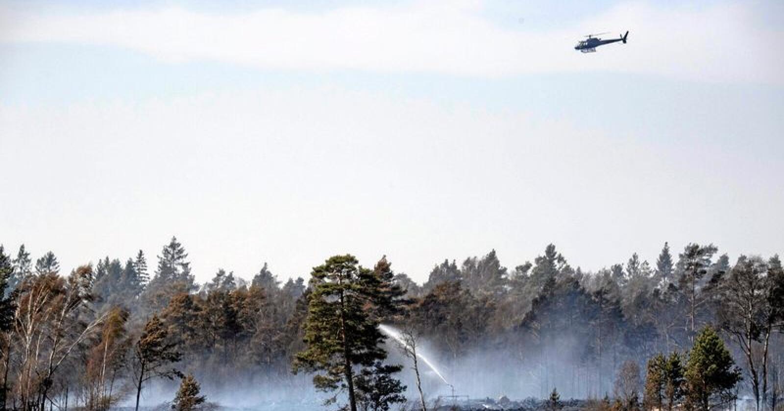 Et 50-tall personer ble evakuert på grunn av skogbrannen utenfor Hästveda denne uka. Brannmannskapene har nå kontroll over denne brannen. Foto: Johan Nilsson/TT / NTB scanpix