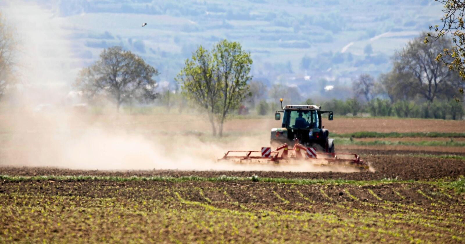 Tyske bønder frykter for nok et tørkeår etten en varm og tørr vår. Her fra våronna vest i Tyskland. Foto: Philipp von Ditfurth/AP/NTB Scanpix