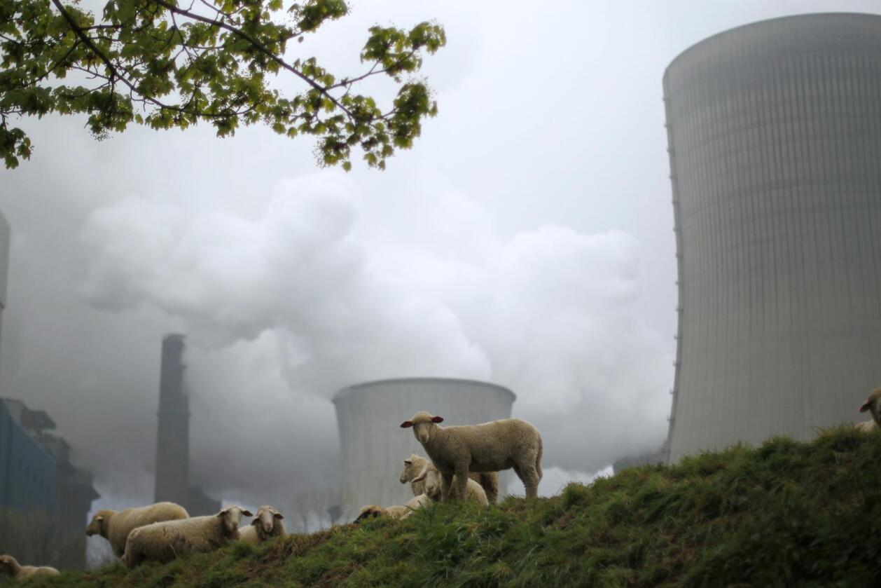 RWE er et energiselskap, kontroversielt på grunn av investeringer i olje og gass og bruk av kull - som her, utenfor byen Niederaussem - som nå dras for retten for klimaendringer. Foto: Reuters