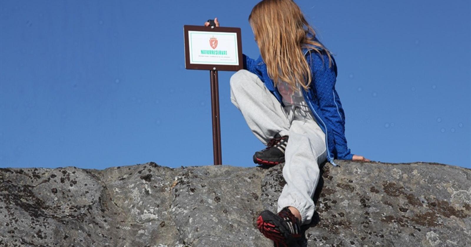Verneverdier i nasjonalparker er i første rekke naturverdier knyttet til urørthet.Foto: Vegard Gundersen / NINA