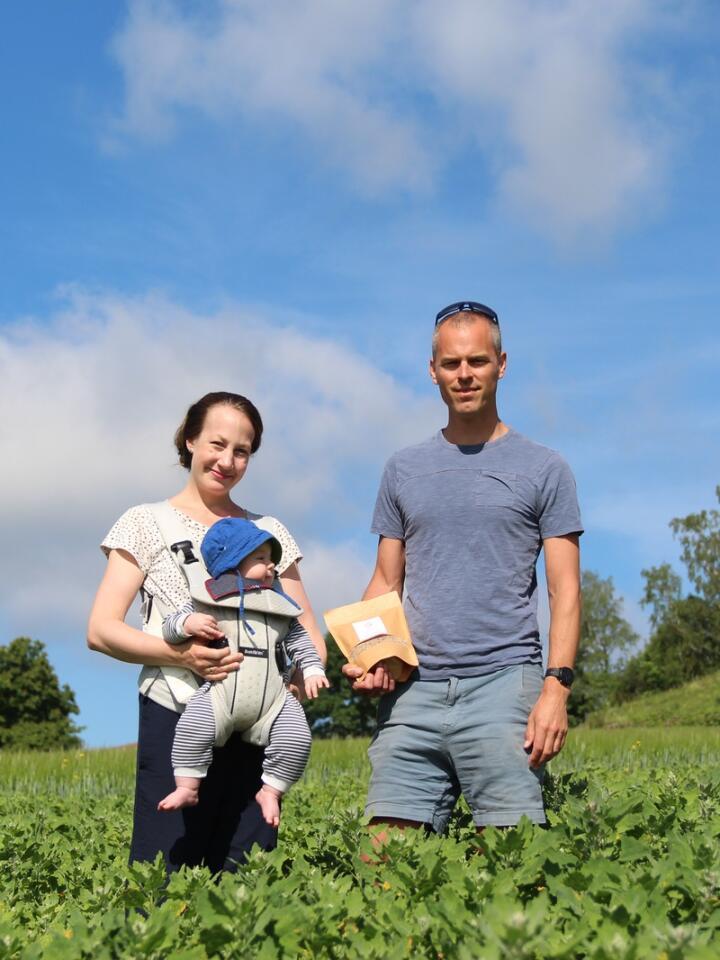 GÅR FORAN: Som de første kommersielle quinoa-dyrkerne i Norge, har Marthe og Jardar måttet prøve seg litt fram, både med agronomien og markedet.