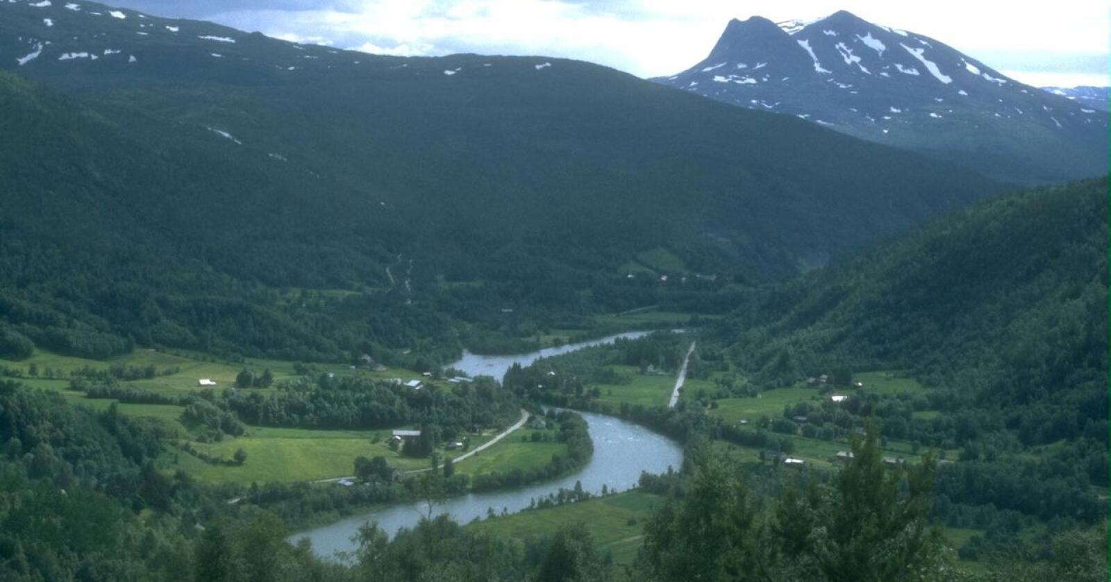 Bildet viser Beiarn-vassdraget i Salten i Nordland. (Arkivfoto Bondebladet)