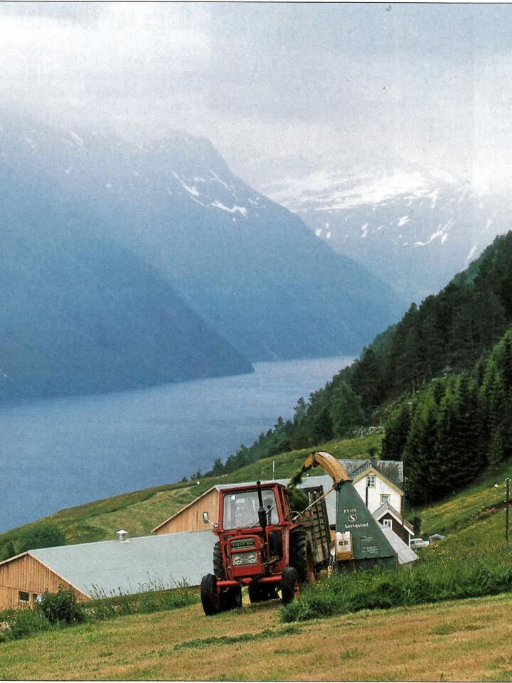 Storslått: På 70-tallet kunne en hel verden se reklamefilmen der en Volvo BM T430 med Serigstad fôrhøster, slår gras i de bratte bakkene på Sunnmøre.
