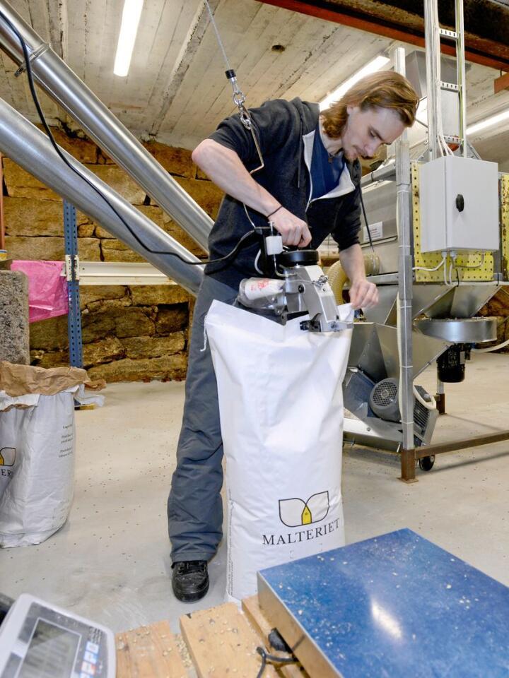 På Nordre Lie malter Jostein Svalheim (30) tradisjonsrike byggsorter, dyrket i Norge med full sporbarhet fra jorde til ferdig malt. Alle foto: Mariann Tvete