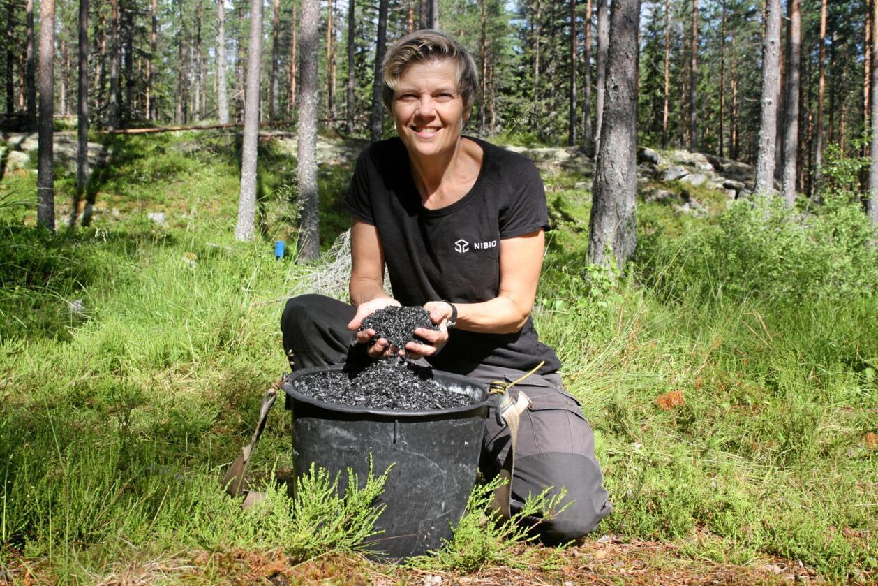 NIBIO-forsker Kjersti Holt Hanssen forklarer at nitrogenanriket biokull i teorien kan gi en trippel effekt for skogen og skogbruket – økt vekst, økt karbonlagring i trær og skogsjord og mindre avrenning. Foto: Helge Meissner, NIBIO.