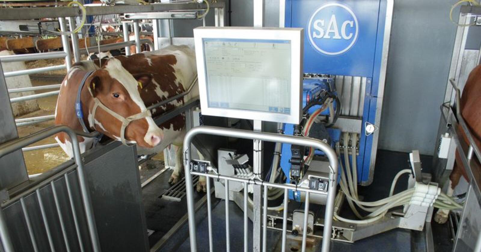 Roboter installeres i både nye og eldre, store og mindre fjøs. Utsikten til et mer sosialt liv er drivkraften for mange bønder. Foto: SAC
