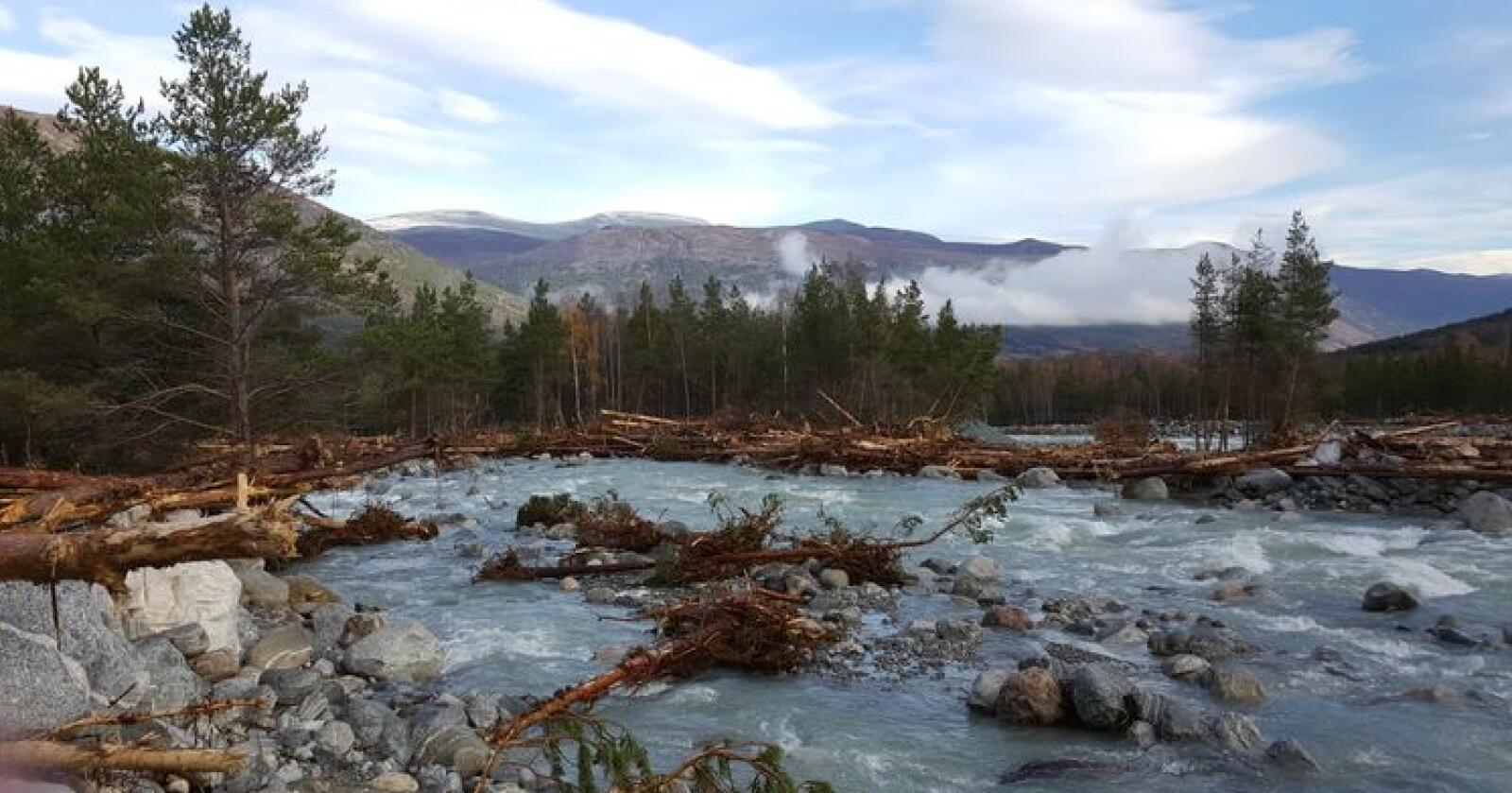 Ekstremværet påfører Gjensidige og andre forsikringsselskaper store kostnader. Bildet er fra flommen i Skjåk i oktober. Deler av elva «Skjøla» har laget et nytt elvefar. Foto: Ola Råbøl