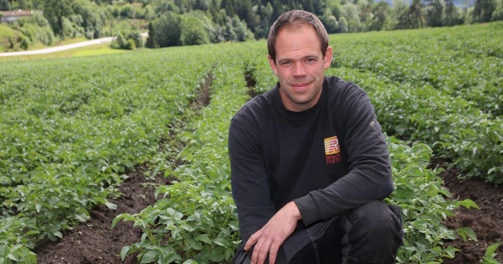 Krever økt pris: Leif Johann Rugsland jobber for at produsentene skal få bedre betalt for industripotet. På dette jordet dyrker han sorten Berle. Foto: Lars Olav Haug