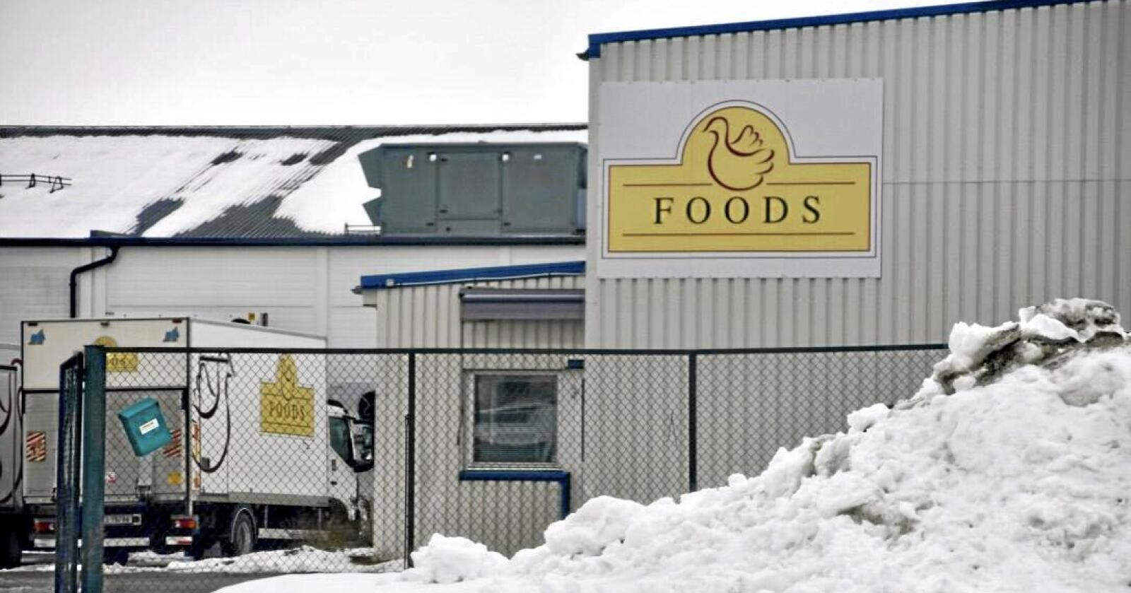 Selskapet Foods AS sier opp ansatte etter leveringsnekt fra Nortura, opplyser selskapet. Foto: Nationen