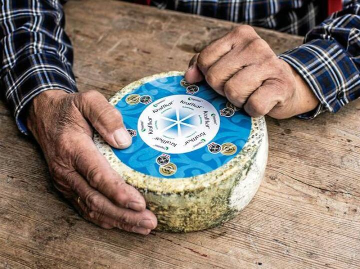 Kraftkar fra Tingvollost ble - til hele verdens overraskelse - kåret til verdens beste ost gjennom tidene i 2016. Foto: Tingvollost