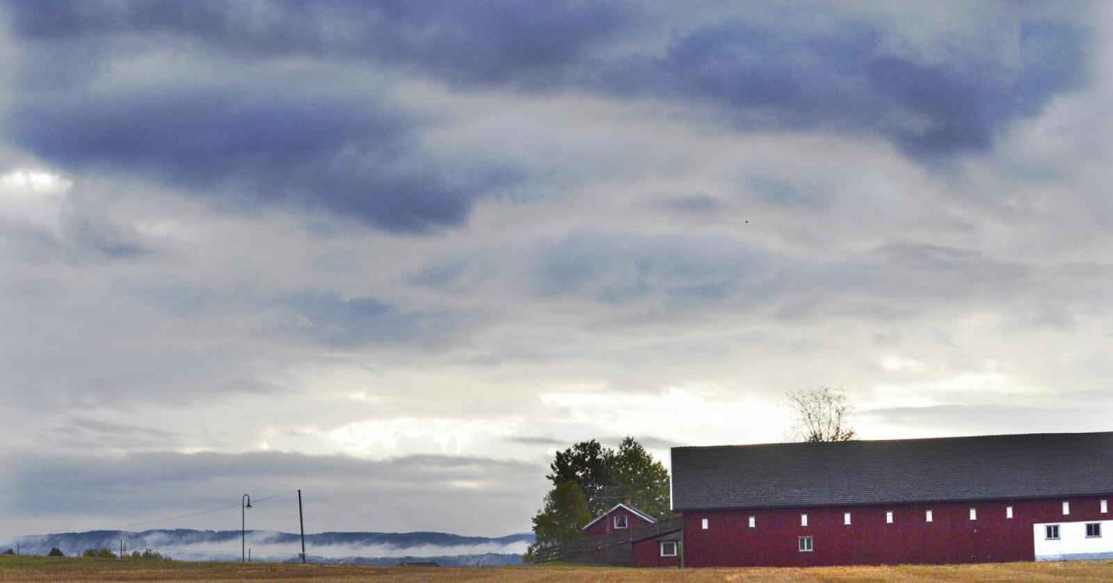 Det er mange av de eksistensielle spørsmålene i landbruker som skjønnlitteraturen er vel så egnet til å ta opp som faglitteraturen, skriver Camilla Mellemstrand. Helgen 4. og 5. september arrangeres litteraturfestivalen Jorddøgn på Jæren som skal binde sammen landbruk og litteratur. Foto: Siri Juell Rasmussen