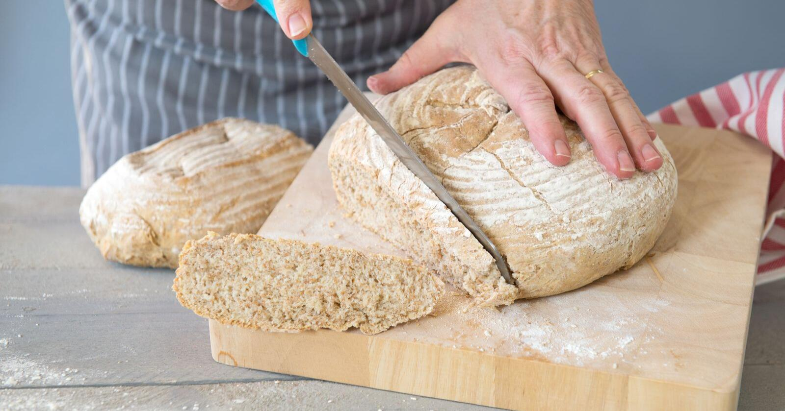 I brødet: Muggsoppgiften DON finnes i nesten alle kornvarer, så vi får vi det i oss kontinuerlig. Foto: Mostphotos