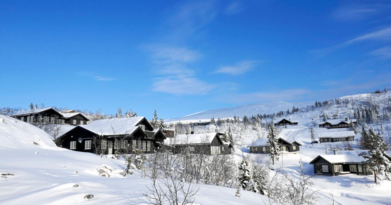 Ei tolegrense for hytter?: Her frå Norefjell i Buskerud. Foto: Erik Johansen / NTB scanpix