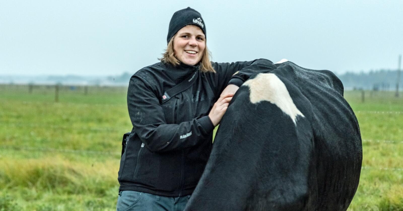 Melkekyr leverer ikke mindre melk selv om de slippes på beite, viser forskningen til Haldis Kismul.Foto: Fredrik Bergenkvist / Bergenkvist Photography