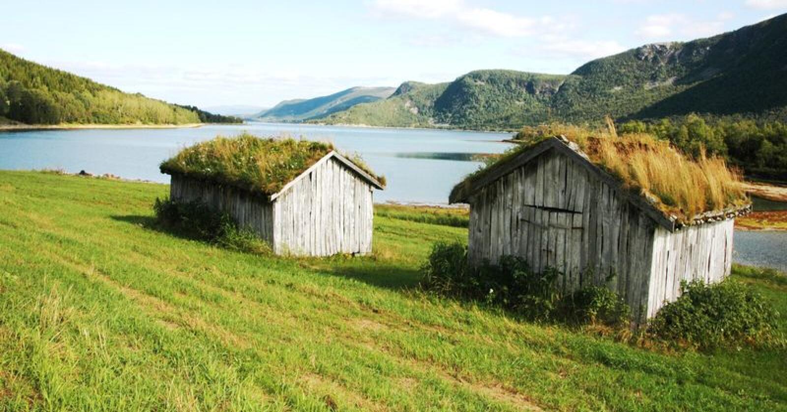 I Norge er det rundt 3300 freda hus som er i privat eie. Det kan være alt fra herregårder til husmannsplasser. Nær halvparten av disse bygningene er i god stand, mens de øvrige trenger moderat eller omfattende istandsetting. (Arkivfoto fra Bodø)