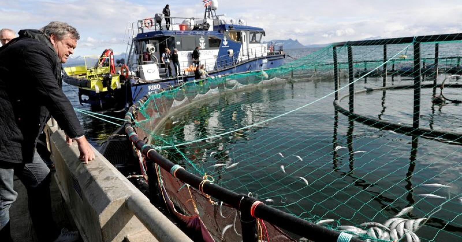 Fiskeriminister Harald T. Nesvik fikk se algenes herjinger på nært hold. Foto: Berit Roald / NTB scanpix