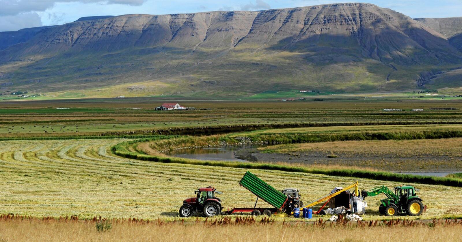 Island har i likhet med Norge inngått en egen avtale med EU om handel med landbruksprodukter. I avtalen har Norge og Island forpliktet seg til å bygge ned handelsbarrierer i landbrukssektoren. Nå vil Island se på avtalen på nytt.