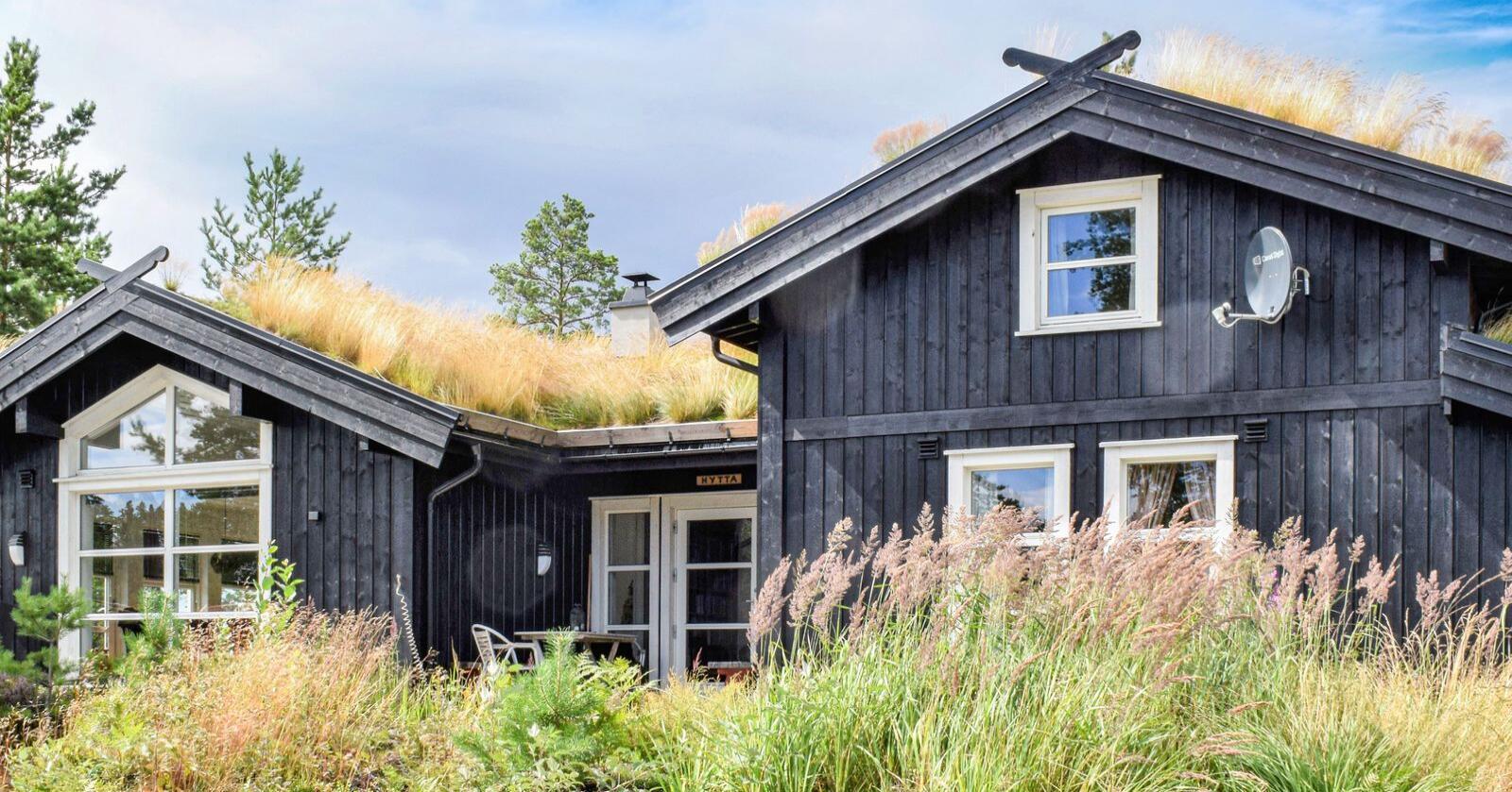 Tingingane frå nordmenn som vil leige hytte i eige heimland er på rekordnivå. I haustferien er veksten over 20 prosent. Illustrasjonsfoto: Novasol