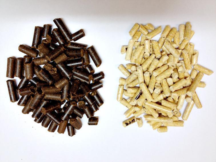 KULL FRA SKOGEN: Slik ser biokull ut (til venstre). Vanlig trepellets til høyre. Biokullet har en størrelse på linje med en sigarett delt i tre. (Foto: Linda Camilla Strømsod, Viken Skog)