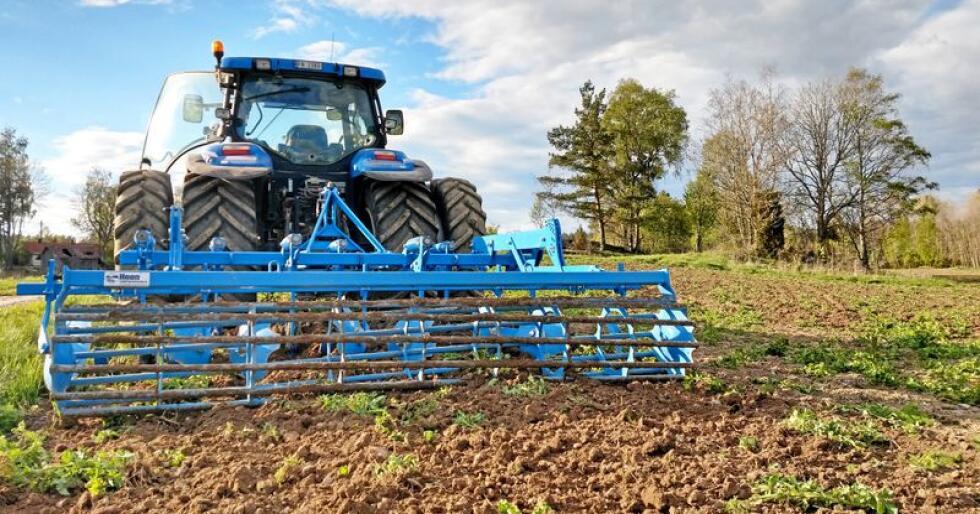 Vi forsøkte i fjor høst å dyrke høstraps. I vår måtte vi harve ned rapsen. Foto: Øystein Heggdal