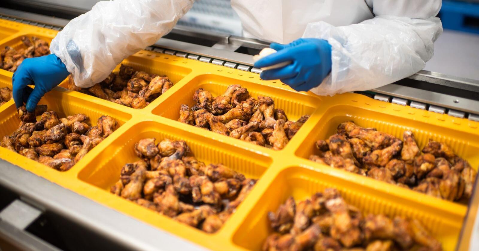 Norsk Kylling ble ikke konsultert før presentasjonen av en rapport som ble brukt til å kritisere slakteriets eiere. Illustrasjonsfoto: Ketil Blom Haugstulen