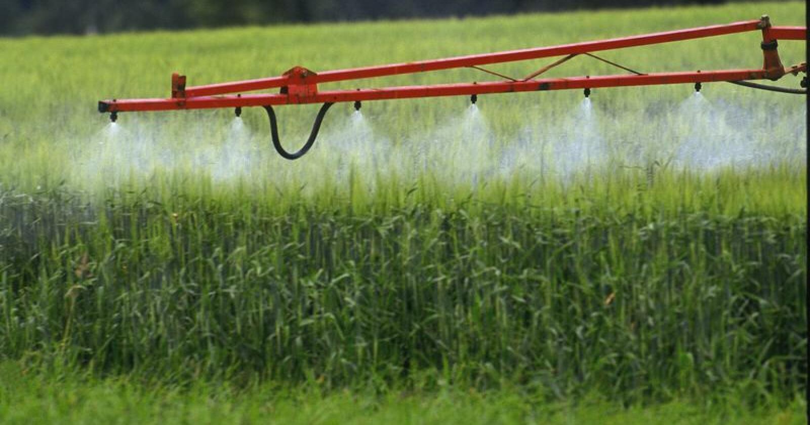 Bayer har så langt tapt tre saker der de er saksøkt for at Roundup har forårsaket Non-Hodgkins lymfom. (Illustrasjonsfoto)