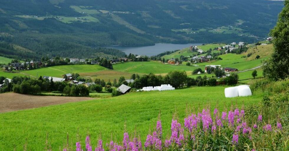 Hver tredje eier av landbrukseiendom i Norge er 67 år eller eldre. Og andelen eldre eiere har økt de siste ti åra. Foto: Bondebladet