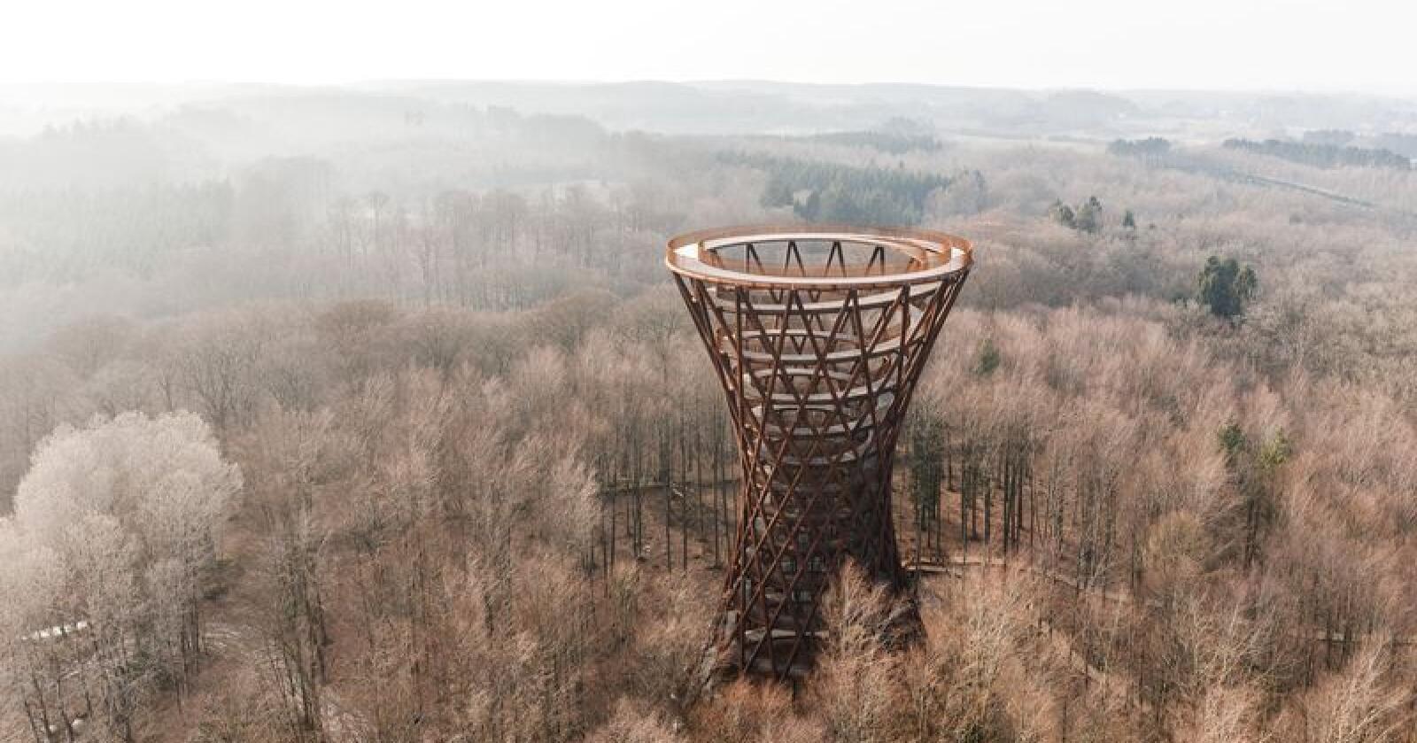 Gangveiene leder deg 45 meter opp i klatreparken på Sjælland. Illustrasjon: Effekt Arkitekter og Camp Adventure