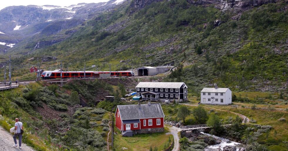 Et tog på vei inn i tunnelen ved Myrdal stasjon på Bergensbanen. Foto: Marianne Løvland / NTB scanpix