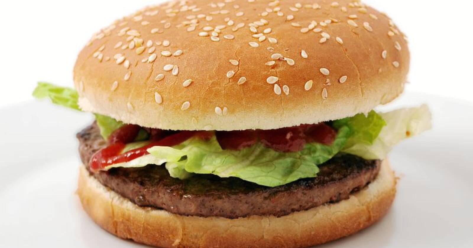 Denne burgeren er laget av kjøtt, og slik bør det være om man skal kunne bruke termen «burger», mener flertallet i EU-parlamentets landbrukskomité. Foto: Colourbox
