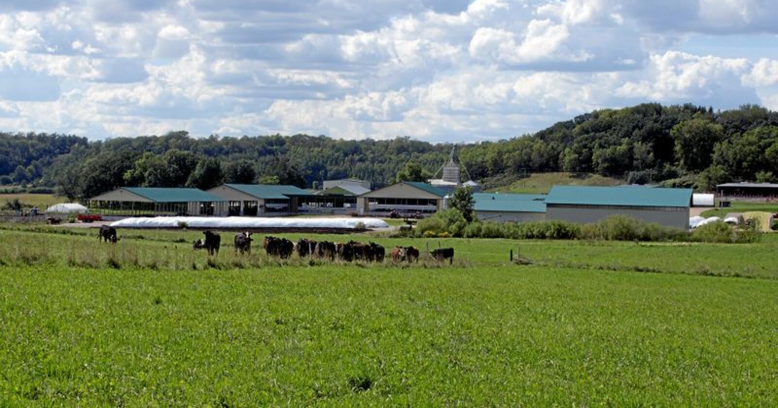 Eit stort mjølkebruk i vestre Wisconsin. Foto: Paul Jantz Mostphotos