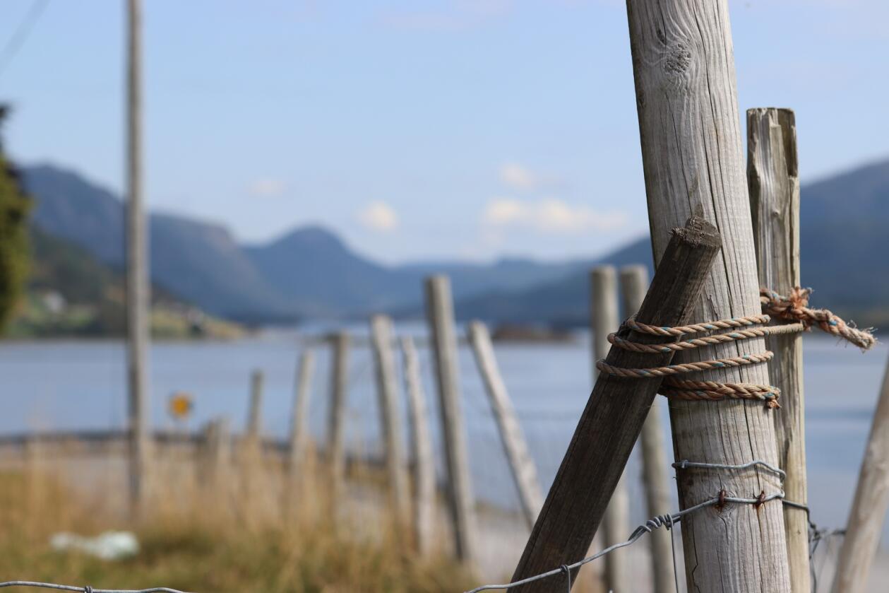 Kyst og fjord-kommunar vil at den komande regjeringa satsar tungt på infrastruktur, både strøm, veg og fiber.  Foto: Janne Grete Aspen
