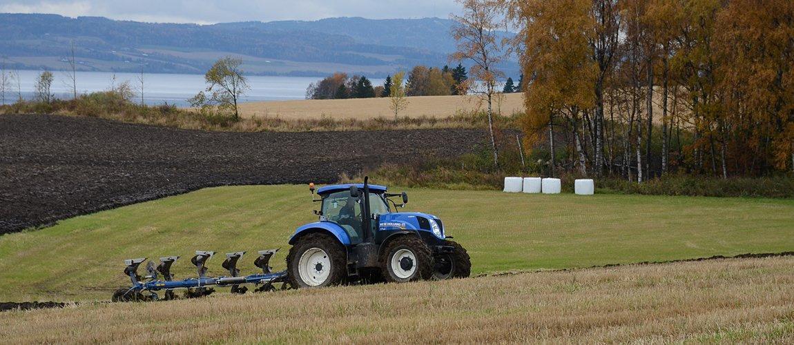 Forsker Till Seehusen i NIBIO har gjennomført flere undersøkelser på konsekvenser av jordpakking. Foto: Jon Schärer.